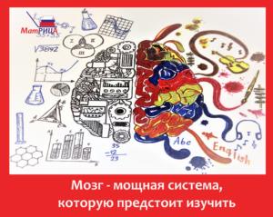 Мозг - изучение и развитие способностей